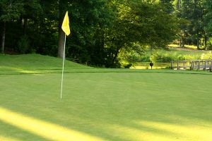 Lets Talk Greens Which Putting Surface Works Best