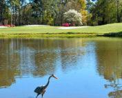 eagle nest golf course