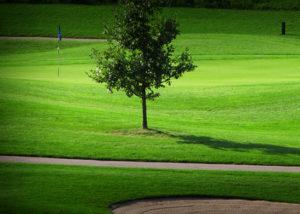 Eastport golf course