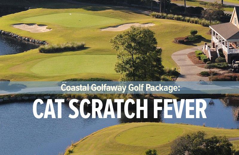 Cat Scratch Fever featuring the Big Cats of Ocean Ridge Plantation