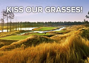 Kiss our grasses golf package